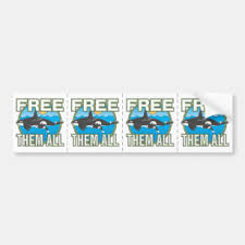 Animal Rights Bumper Stickers Decals Car Magnets Zazzle