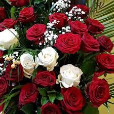 ورود وأزهار الصفحة الرئيسية فيسبوك