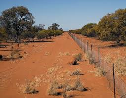 The Longest Fence In The World Is In Australia Nicole Alexander
