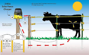 How To Install A Solar Electric Fence Step By Step Process