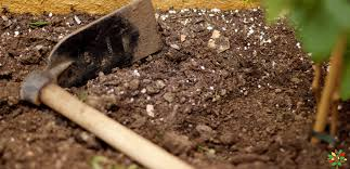 how to make a good potting mix my