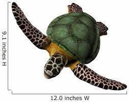 3d Great Sea Turtle Wall Decal Design 3 Wallmonkeys Com