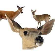 Electronic Shock Deer Repellent 2 Pack Deer Repellent Havahart