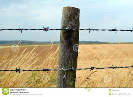 Barbed Wire Fence Stock Image Image Of Summer Sussex 32554309