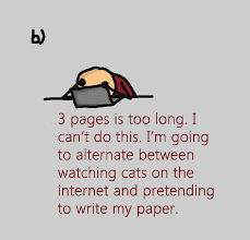 write essays the best essay writing