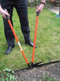 lawn care tools tested and reviewed by