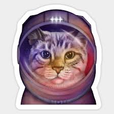 Astronaut Cat In Space Space Cat Sticker Teepublic