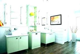 green and gray bathroom ideas light
