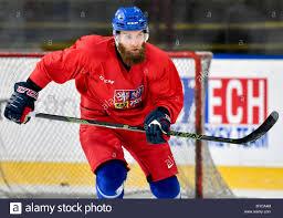 Adam Polasek, ice hockey player of the Czech national team, attends a Stock  Photo - Alamy