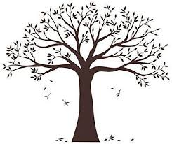 Family Tree Wall Decal By Simple Shapes Chestnut Brown Standard Size Onlineamericanstore