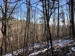 PEARL JOHNSON Rd, Ranger, GA, 30734 - Agricultural Land For ...