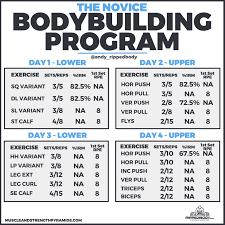 program spreadsheet by ripped body