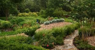 garden rehab central texas gardener