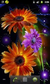 colorful flowers live wallpaper android