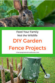 Diy Garden Fence Ideas Protect Your Harvest Champagne And Mudboots
