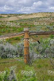 Barb Wire Fence With Wood Post And Brace Stock Photo Download Image Now Istock