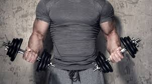 the 30 minute dumbbell workout program
