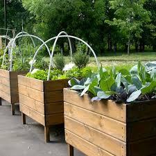 small garden ideas urban garden