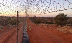 Feral Proof Fence Arid Recovery
