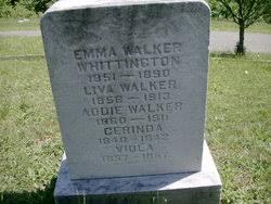 Addie Walker (1860-1911) - Find A Grave Memorial
