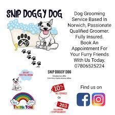 Dog Grooming Service | in Norwich, Norfolk | Gumtree