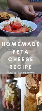 making homemade feta cheese recipe