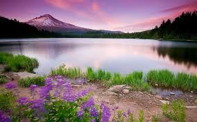 صور طبيعة خلابة اجمل الصور الطبيعية الساحرة هل تعلم