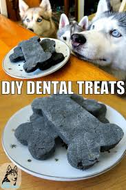diy dental treats for dogs gone to