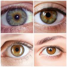 makeup ideas for hazel eyes you