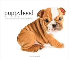 Amazon.com: Puppyhood: Life-size Portraits of Puppies at 6 Weeks Old  (9781584799849): Smith, J. Nichole: Books