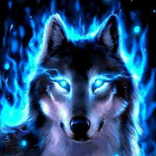 amazing wolf wallpapers on the app