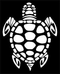 I Brake For Turtles Sea Turttle Tortoise Truck Car Window Sticker Decal 720 Car Truck Graphics Decals Motors Tamerindsa Com Ar