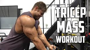 pure tricep workout for m deled