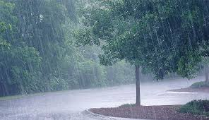 Heavy Rain,rain in chennai,heavy rain in 7 districts,தமிழகத்தில் கனமழை,கனமழை,