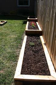 vegetable garden raised garden beds