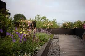 garden designer visit a rooftop meadow