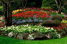 raised bed flower garden ideas
