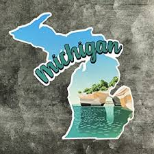 Amazon Com 9 Michigan Native Vinyl Decal Sticker Everything Else