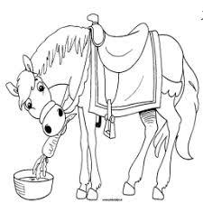 Kleurplaat Paard Van Sinterklaas Kleurplaatarchief Nl
