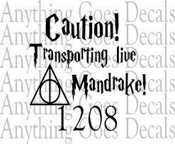 Caution Transporting Live Mandrake Decal 1208 Anything Goes Decals