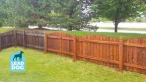 Fence Cleaning Lead Dog Power Washing Service Pressure Washing