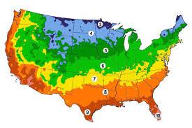planting schedules urban farmer seeds