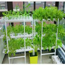 pvc pipe nft hydroponic systems
