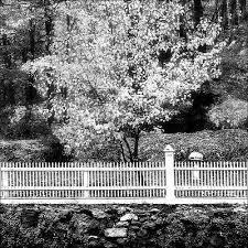 Picket Fence Art Fine Art America