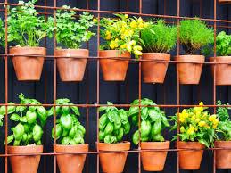 35 Vertical Herb Garden Ideas