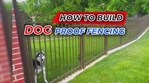 How To Build Dog Proof Fencing Youtube