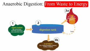 biogas digester by tyler