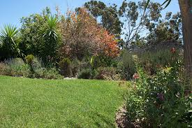 zant garden and landscaping services