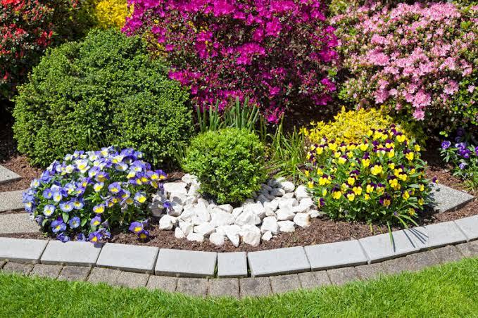 """Resultado de imagen de jardines con colores"""""""