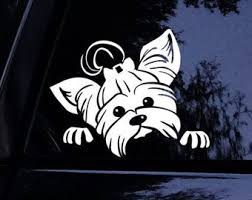 Yorkie Decal Etsy